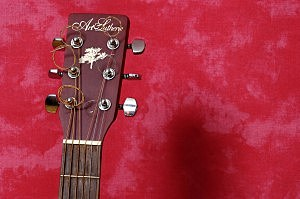 Acoustic guitar headstock