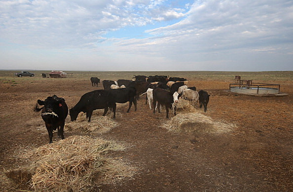 Drought worsens in midwest