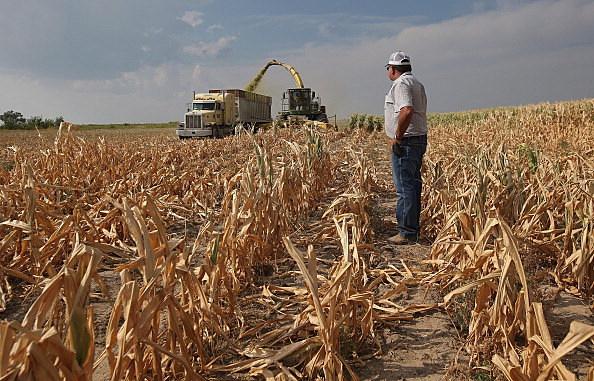South Dakota Crops
