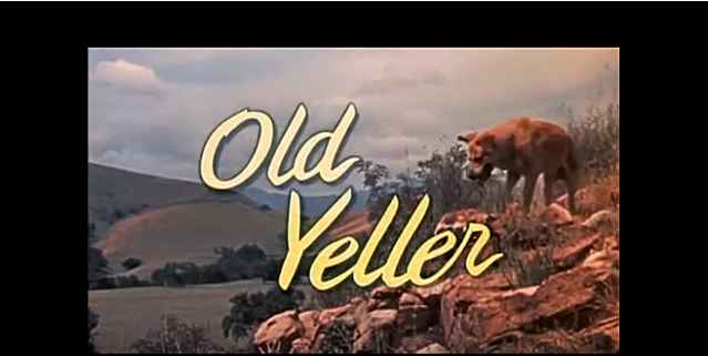Old Yeller via Jason Flood YouTube