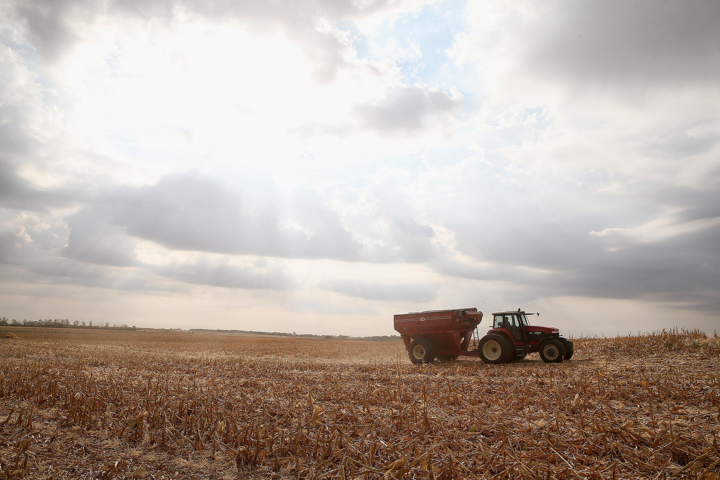 Farming at Harvest